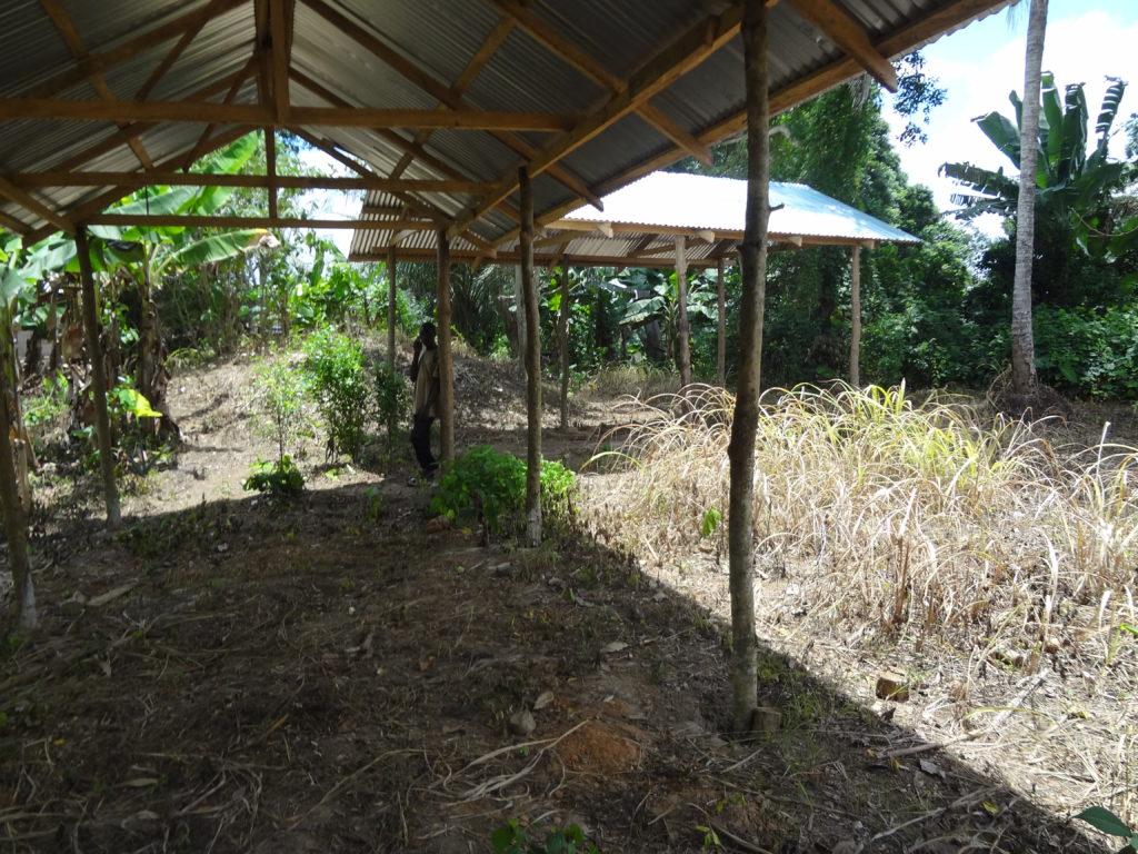 Das Schreinhaus und die Pavillons. Hier werden die traditionellen Tänze und Rituale der Akan-Heilmedizin durchgeführt.